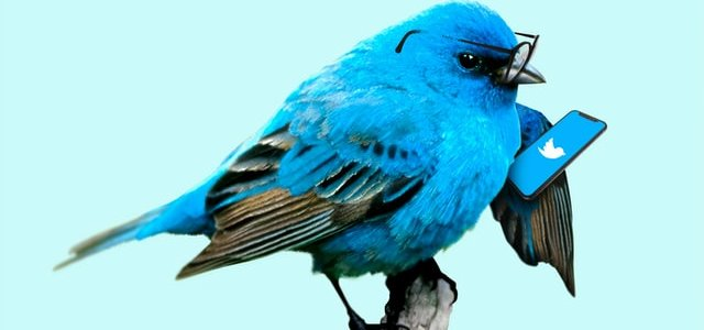 Twitter集客・宣伝方法のコツを伝授!集客術効果でユーザーに寄り添う方法とは