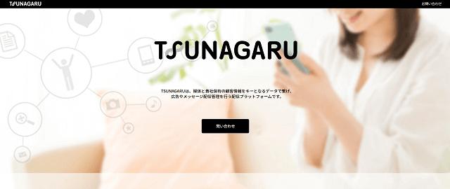 TSUNAGARUキャプチャ画像