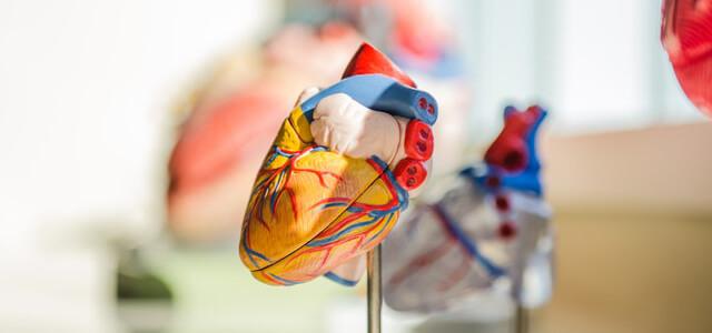 2021年は医療・健康業界にオンライン展示会は定着するだろうか?